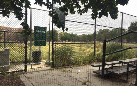 Words from an Athlete: Reminiscing On Past Seasons at the Red Hook Fields