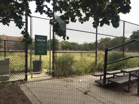 The Red Hook ball fields
