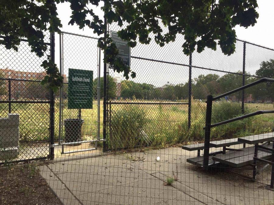 The Red Hook ball fields