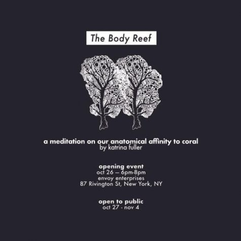 The Body Reef Brochure